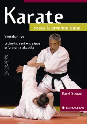 Karel Strnad: Karate